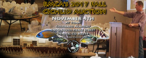 Fall_2017-Auction